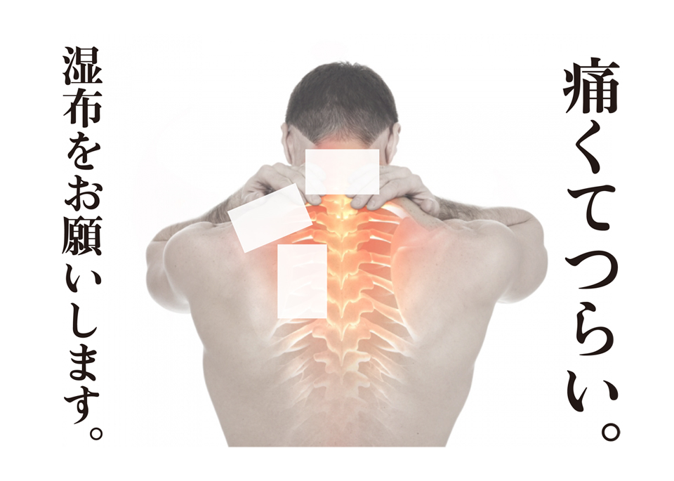 http://www.monokaki-0138.jp/hakodate/sippu.jpg